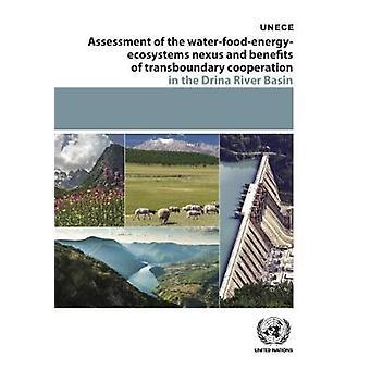 Évaluation de l'eau-aliments-énergie-écosystèmes Nexus et les avantages de