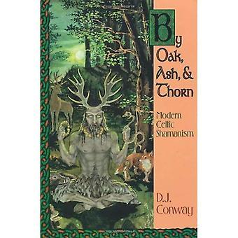 Chêne, frêne et Thorn: chamanisme celte moderne (sagesse celtique de Llewellyn)