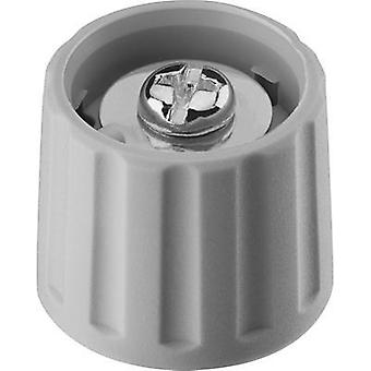 Control knob Grey (Ø x H) 21 mm x 17.5 mm Ritel 26 21 60 1 1 pc(s)