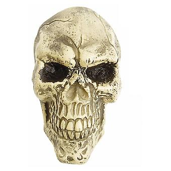 Halloween and horror  Wall Skull