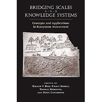 Överbrygga skalor och Knowledge Systems: begrepp och tillämpningar i Ecosystem Assessment