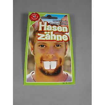 Bunny teeth Beaver rabbit Bunny Hauer teeth dentition joke articles