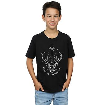 Harry Potter Boys Expecto Patronum Charm T-Shirt
