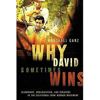 Waarom David soms wint: Leiderschap, organisatie en strategie in de California boerderij werknemer beweging