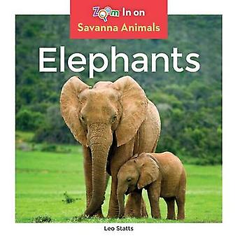 Elephants by Leo Statts - 9781680792003 Book