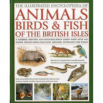 The Illustrated Encyclopaedia of Animals, Birds and Fish of British Isles: A Natural History and Identification Guide to the Indigenous Wildlife of ... and Wales