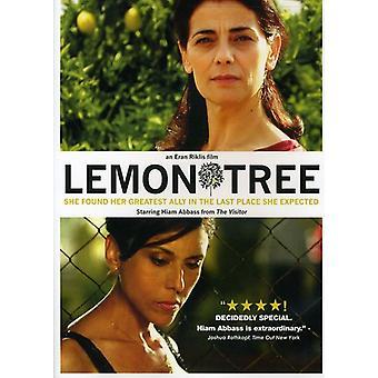 Lemon Tree [DVD] USA import