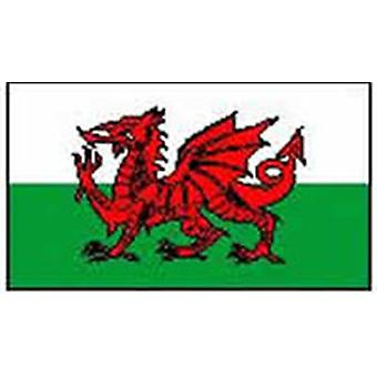 Wales/Walisisk Flag 3 ft x 2 ft
