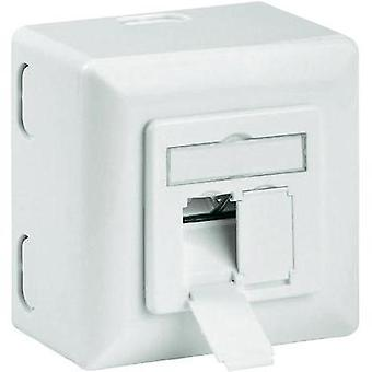 Network outlet Surface-mount CAT 6A 2 ports Goobay White
