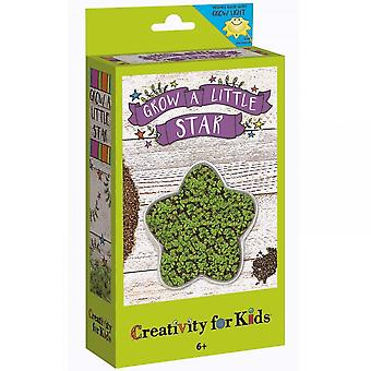 Creativity for Kids Grow a Little Star Kit