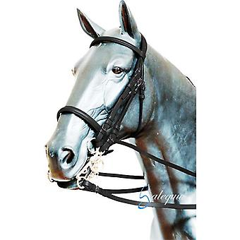 Galequus English Bridle T-19 fillet Cob Brown