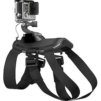 Dog harness GoPro Fetch ADOGM-001 Suitable for=GoPro