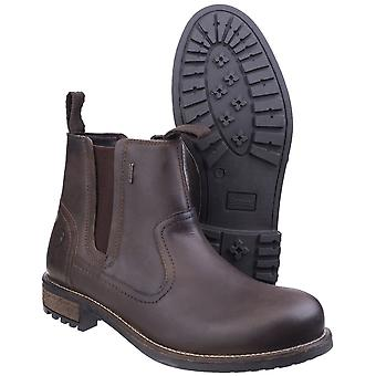 Cotswold Mens Worcester Nubuck leer licht waterdichte Chelsea Boots