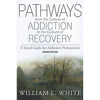 Pathways from the Culture of Addiction to the Cult: A Travel Guide for Addiction Professionals