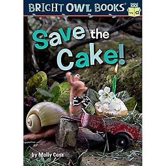 Save the Cake!: Long Vowel� a (Bright Owl Books)