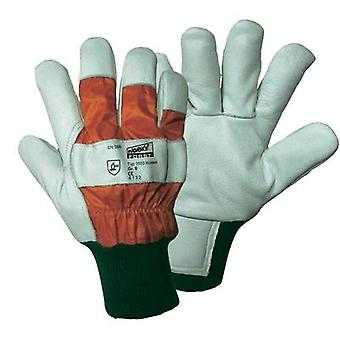 worky 1603 Wiesel Forst - Forestry protection glove, Size 10 Upper material: cow grain leather with nylon back Lining:
