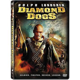 Diamond hundene [DVD] USA importere