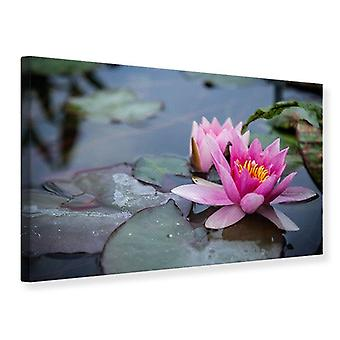 Canvas Print The Waterlilies Duo