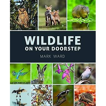 Wildlife on Your Doorstep by Mark Ward - 9781921517747 Book