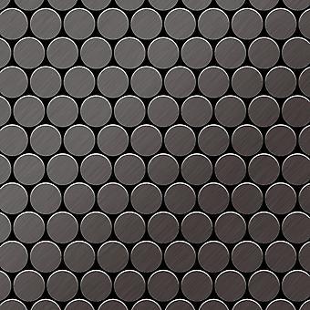 Metal mosaic Titanium ALLOY Dollar-Ti-SB