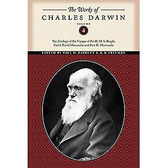 Las obras de Charles Darwin: la zoología del viaje del H. M. S.