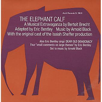 Sheffer/Bentley - Elephant Calf & Small Comments on Large Themes [CD] USA import