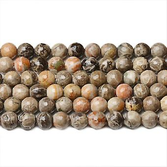 Strand 65+ Grey/Mixed Fossil Jasper 5-6mm Faceted Round Beads CB42235-2