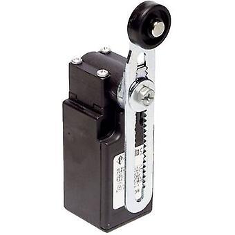 Limit switch 250 V AC 6 A Pivot lever momentary Pi
