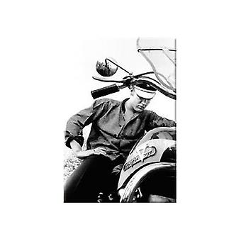 Elvis på Harley Davidson stål kjøleskap Magnet