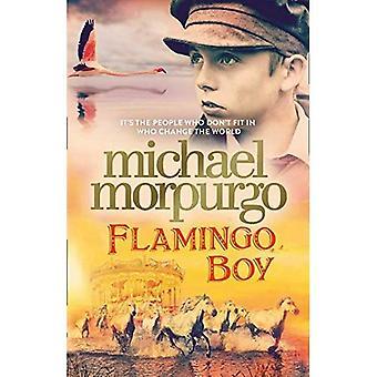 Flamingo Boy (Hardback)