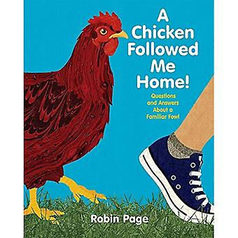 A Chicken Followed Me Home!: Questions and Answers about a Familiar Fowl