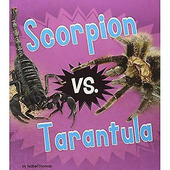 Scorpion vs. Tarantula (Animal Rivals)