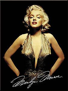 Marilyn Monroe Gold Dress fridge magnet  ( na)