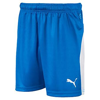 PUMA League of shorts Jr kids of soccer shorts electric blue lemonade
