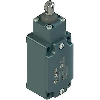 Limit switch 250 Vac 6 A Tappet momentary Pizzato Elettrica FD 515-M2 IP67 1 pc(s)