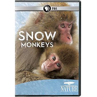 Naturaleza: Monos de nieve [DVD] USA importar