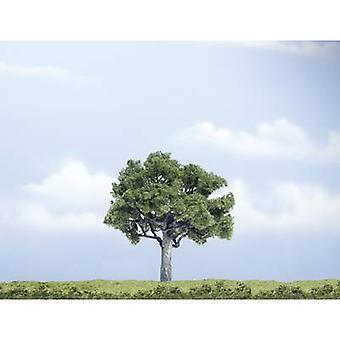 Tree Walnut tree 100 mm Woodland Scenics WTR1622 1 pc(s)