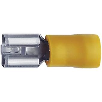 Klauke 750 Blade receptacle Connector width: 6.3 mm Connector thickness: 0.8 mm 180 ° Partially insulated Yellow 1 pc(s