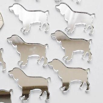 Springer Spaniel Dog Mini Craft Sized Acrylic Mirrors (10Pk)