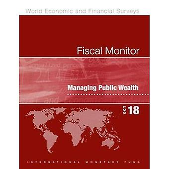 Fiscal Monitor, October 2018: Managing Public Wealth