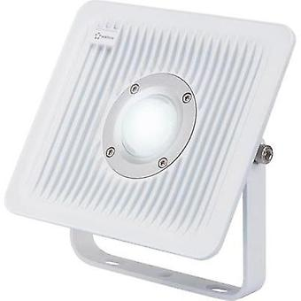 LED outdoor floodlight 30 W Cold white Renkforce 1361116 Grey