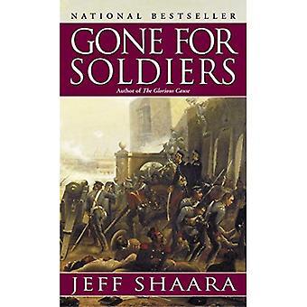 Gegaan voor soldaten: een roman van de Mexicaanse oorlog