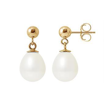 Øreringe ører Pendantes perler af kultur hvid og gul guld 750/1000
