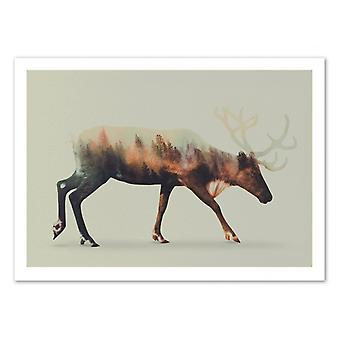 Art-poster-renar-Andreas lie 50 x 70 cm