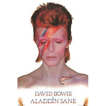 David Bowie - Aladdin Sane Poster Poster Print