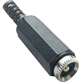 BKL Electronic 072208 Low power connector Socket, straight 5.5 mm 2.1 mm 1 pc(s)