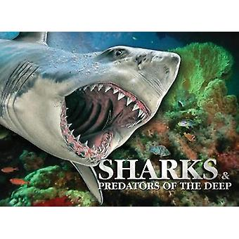 Sharks & Predators of the Deep by Susan Barraclough - 9781782745846 B