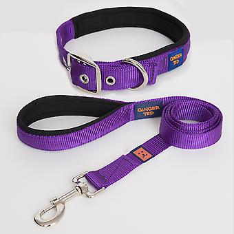 Ginger Ted High Quality Padded Strong Nylon Dog Collar & Lead Value Pack Purple (3 sizes)