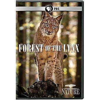 Nature: Forest of the Lynx [DVD] USA import