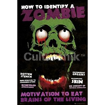 Identify A Zombie Poster Poster Print